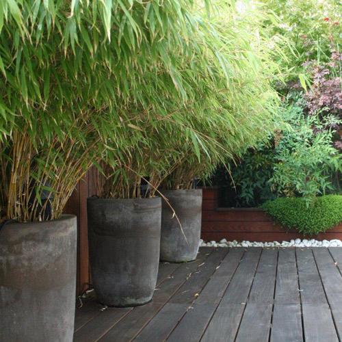 arrosage automatique pour jardin et terrasse l 39 adpj. Black Bedroom Furniture Sets. Home Design Ideas