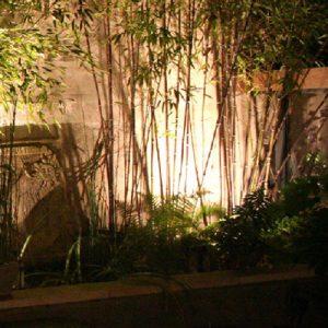 ladpj - Un spot valorise l'ambiance végétale
